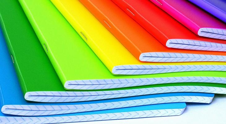 Пензенских родителей возмутили требования учителей к цвету тетрадей