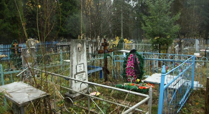 Тротуары и водопровод: строительство кладбища в Пензе оценили в 37 миллионов