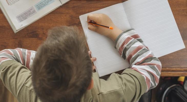 Пензенской школе выделили деньги на обучение детей мигрантов