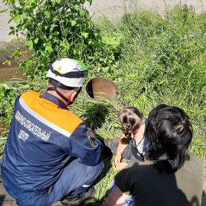 В Пензе девочка провалилась в трубу во время прогулки