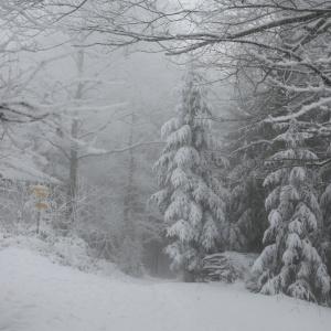 Пензенцев предупредили об опасной погоде в воскресенье