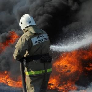 «Это катастрофа»: в Пензенской области растет количество пожаров