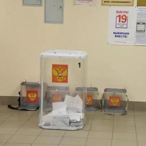 В Пензенской области обнародовали результаты голосования на выборах в Госдуму